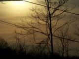 My Night by thebitchyboss, Photography->Landscape gallery