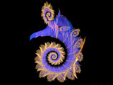 Apophysis Seahorse by J_272004, Abstract->Fractal gallery