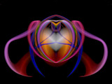 Captured Heart by jswgpb, Abstract->Fractal gallery
