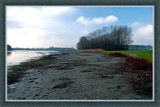 Low Tide 4 by corngrowth, photography->landscape gallery