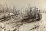 Top of the Dune by Heroictitof, photography->shorelines gallery