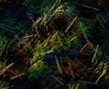 toothpicks by metallicnight, abstract gallery