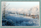 Zeeland Winter 07 by corngrowth, Photography->Landscape gallery