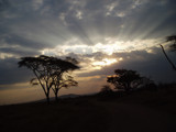 Sunset on the Serengeti by siegeofjones, Photography->Sunset/Rise gallery