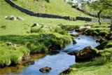 Malham Stream by slybri, Photography->Landscape gallery