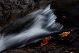 Leaves and Stream 1 by elektronist, photography->waterfalls gallery