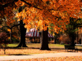 Circus Autumn by jojomercury, Photography->Landscape gallery