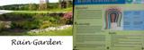 Rain Garden / Drainage Garden by Pistos, photography->landscape gallery