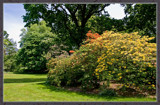 Parkview 2 by corngrowth, Photography->Gardens gallery