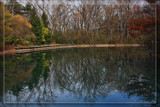 Pearson Metropark Reflections by Jimbobedsel, photography->landscape gallery