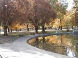 Tower Grove Park 3 by jojomercury, photography->landscape gallery