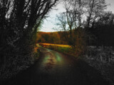 To the light by biffobear, photography->manipulation gallery