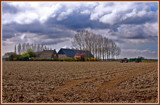 Zeeland Farming 05, Polder View by corngrowth, photography->landscape gallery