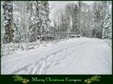 """Merry Christmas Everyone"" by icedancer, holidays->christmas gallery"
