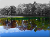 Selective Color Fall by ccmerino, Photography->Shorelines gallery