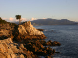 Lone Cypress by Twistedlight, Photography->Shorelines gallery