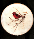 Christmas Cardinal by penny_loafer, Holidays->Christmas gallery