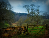 The Gate by biffobear, photography->landscape gallery