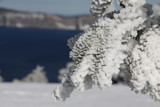 Frosty trees at Crater Lake by auroraobers, photography->nature gallery