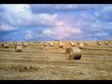 Hayfield in France by Paul_Gerritsen, Photography->Landscape gallery