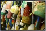 Lobsta Floats by phasmid, Photography->Still life gallery