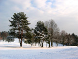winter scenery by BernieSpeed, Photography->Landscape gallery