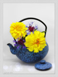 Tea Time ! by LynEve, photography->still life gallery