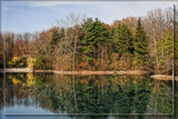 Fall Leftover by Jimbobedsel, photography->landscape gallery