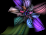 Wild Flower by Joanie, Abstract->Fractal gallery