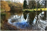 Garden Walk - Winter Reflections by LynEve, Photography->Landscape gallery