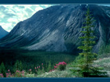 Sunwapta Pass by Cyberbod, Photography->Mountains gallery