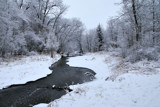 Nine Mile Creek Revisited by Silvanus, photography->landscape gallery
