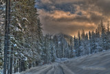 Snowmobile Trail by DigiCamMan, photography->landscape gallery