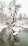 Snow on Walnut Creek by Pistos, photography->water gallery