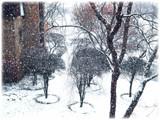 Snowy Sunday by trixxie17, photography->landscape gallery