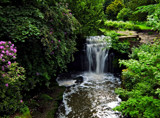 Jesmond Dene by biffobear, photography->waterfalls gallery