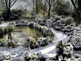 Image: Springtime Snow