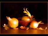 Sprouting Onions by photoimagery, Contests->Food/Drink gallery