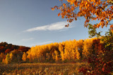 The Warmth of October by Silvanus, photography->landscape gallery