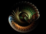 Evolution by razorjack51, Abstract->Fractal gallery