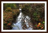 Side Cut Reflections by Jimbobedsel, photography->landscape gallery
