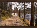 a silent pathway.......... by fogz, Photography->Landscape gallery