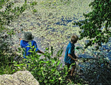 Boys Chasing Frogs by cynlee, photography->people gallery