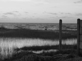 flood by TomcatRenar, photography->shorelines gallery