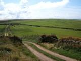 Devon hillside by evile99, photography->landscape gallery