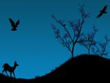 Dogwoodtrees by gabriela2006, illustrations->digital gallery