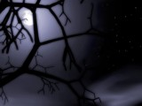 Night Moon by noobguy, Computer->3D gallery