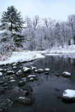Winter on Nine Mile Creek by Silvanus, photography->landscape gallery