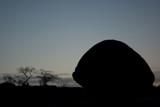Mahabaliburam - silhouette 1 by jpk40, Photography->Landscape gallery