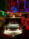 Festive Fountain by Pistos, photography->general gallery